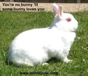 Alice the Bunny